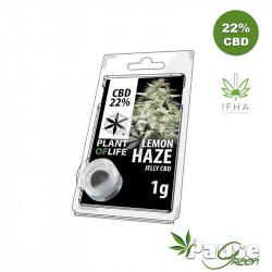 Résine Jelly 22% de CBD - LEMON HAZE - 1g - Plant Of Life ™