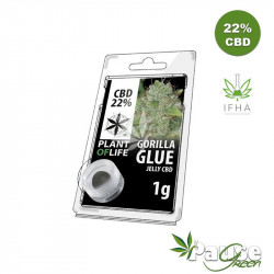 Résine Jelly 22% de CBD - GORILLA GLUE - 1g - Plant Of Life ™
