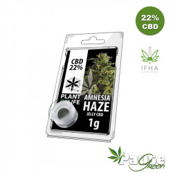 Résine Jelly 22% de CBD - Amnésia Haze - 1g - Plant Of Life™