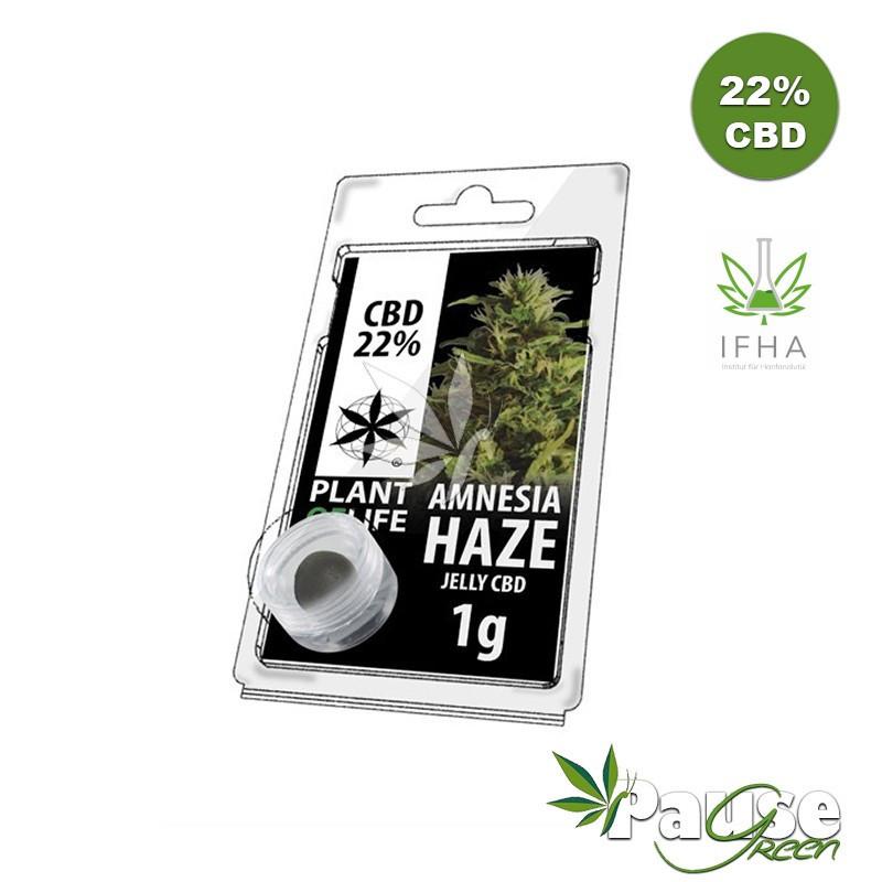 Résine Jelly 22% de CBD - Amnésia Haze - 1g - Plant Of Life ™