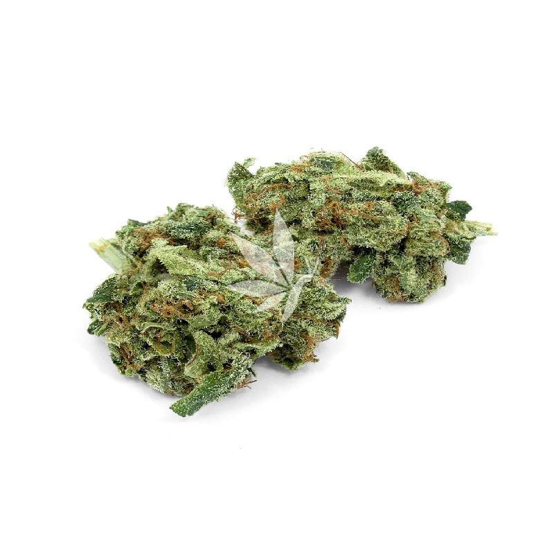 Fleur de CBD - BLUEBERRY - Indoor