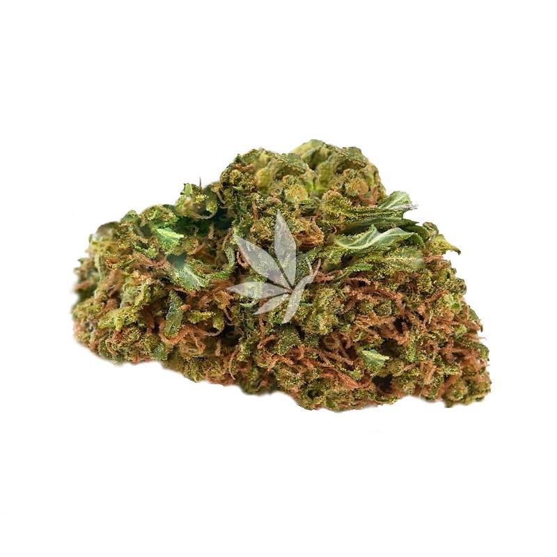 Fleur de CBD   STRAWBERRY HAZE - Greenhouse