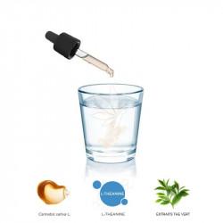 Complexe hydrosoluble 5% de CBD TAKE TO SPOTLIGHT 10ml - PharmaHemp®